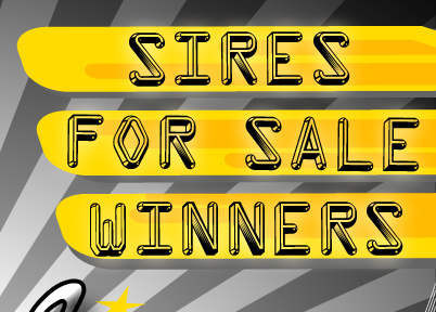 Sires - For Sale - Winners
